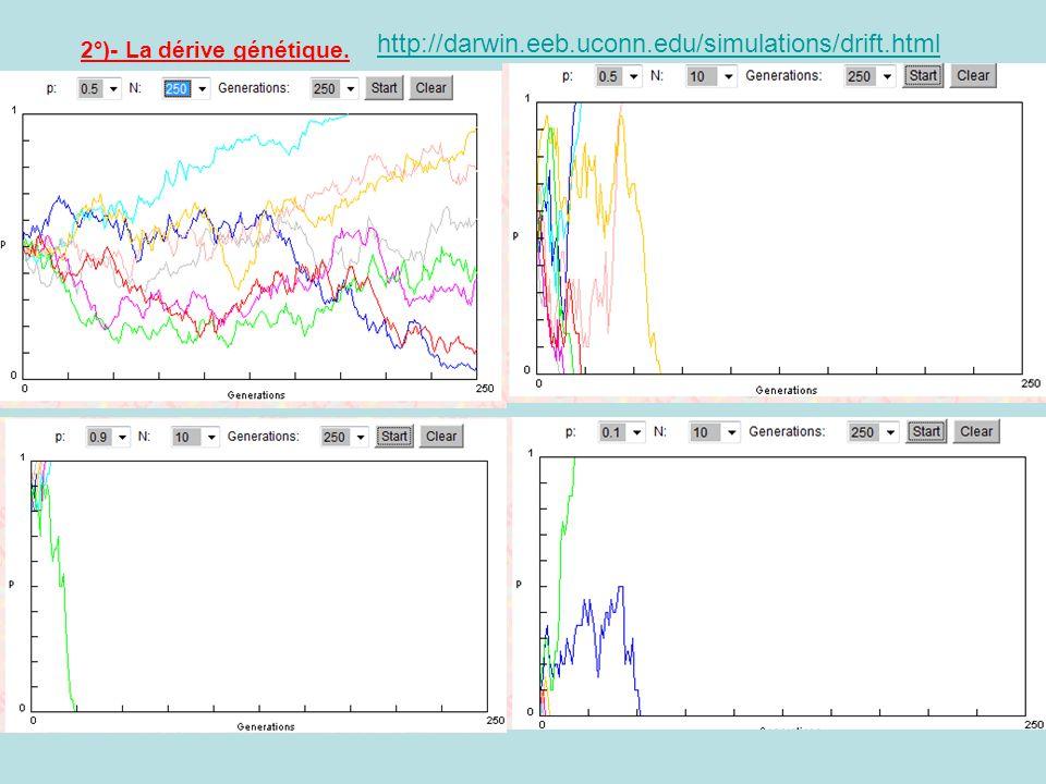 http://darwin.eeb.uconn.edu/simulations/drift.html 2°)- La dérive génétique.