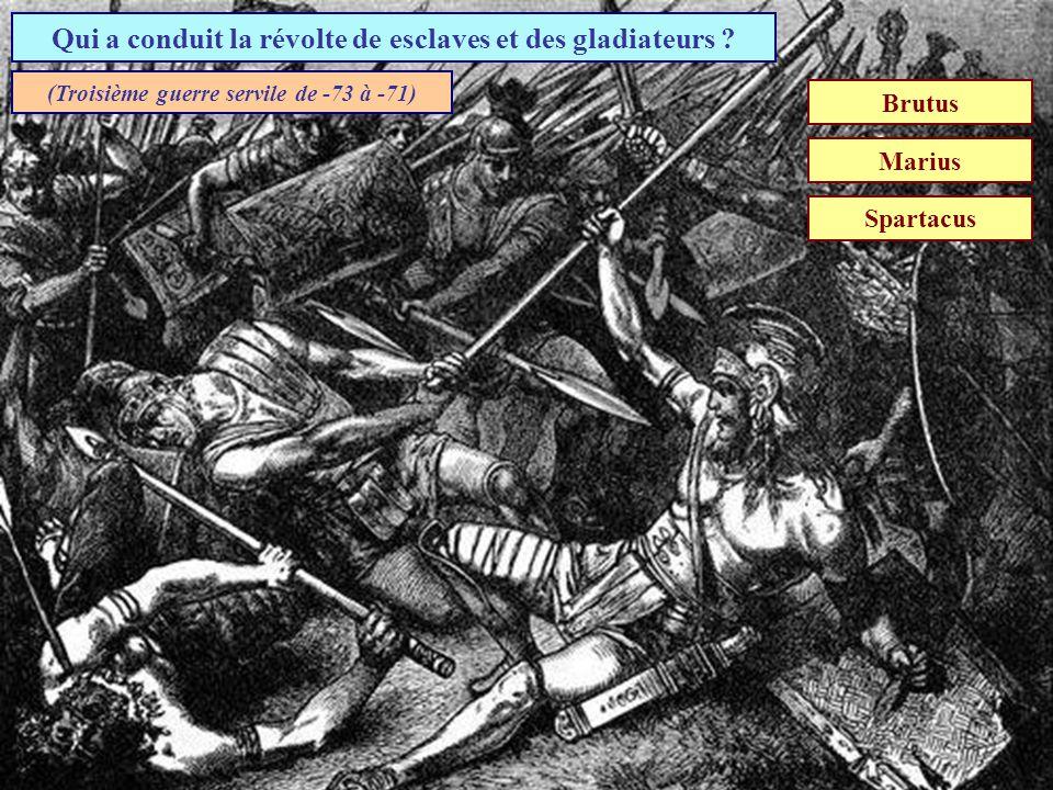 Qui a conduit la révolte de esclaves et des gladiateurs