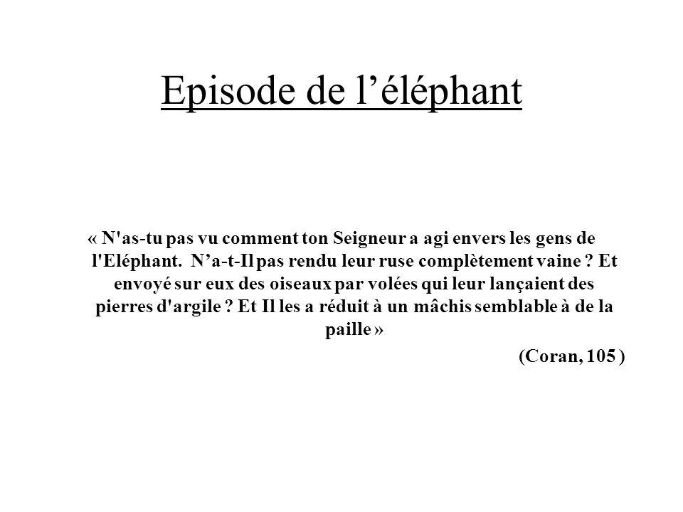 Episode de l'éléphant