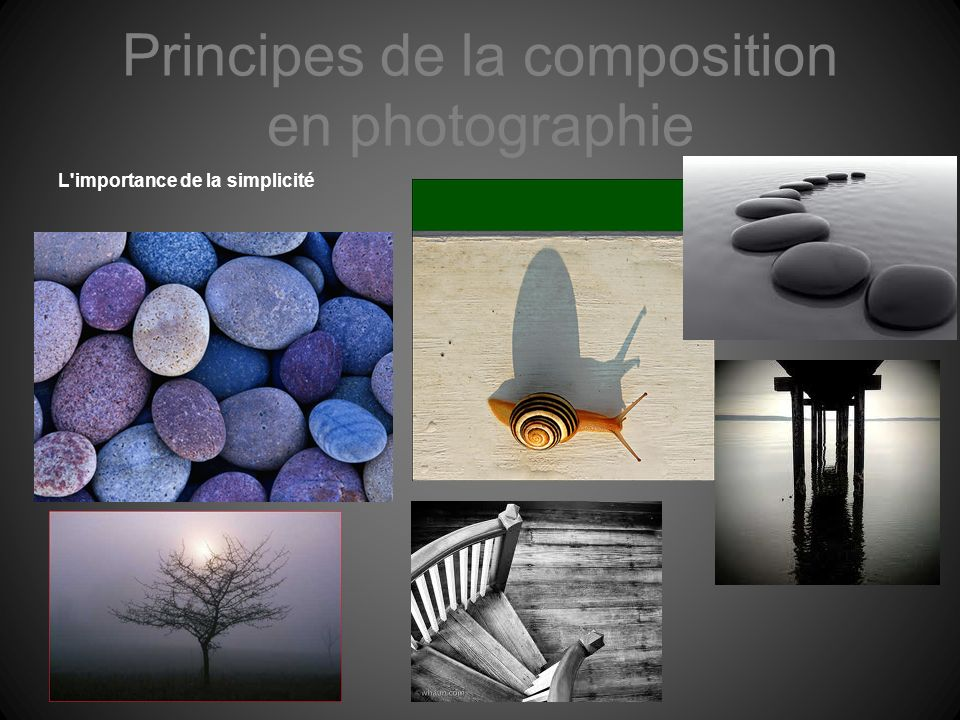 Principes de la composition en photographie