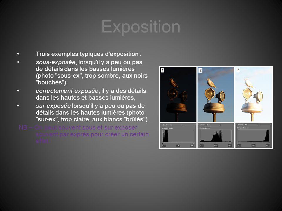 Exposition Trois exemples typiques d exposition :