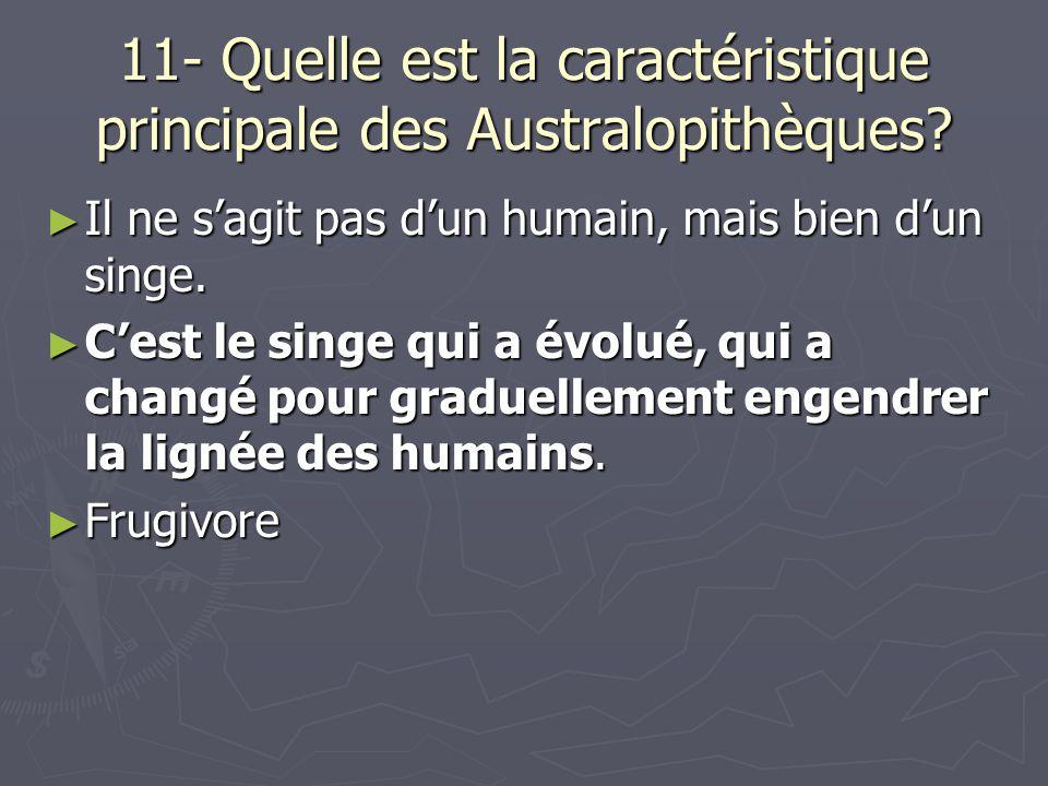 11- Quelle est la caractéristique principale des Australopithèques
