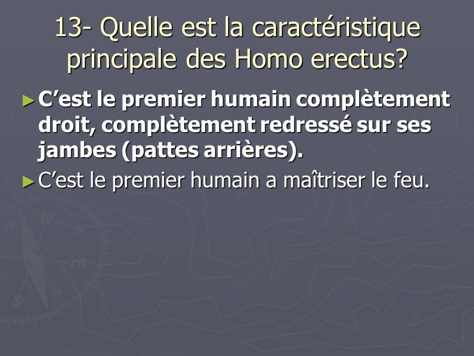 13- Quelle est la caractéristique principale des Homo erectus