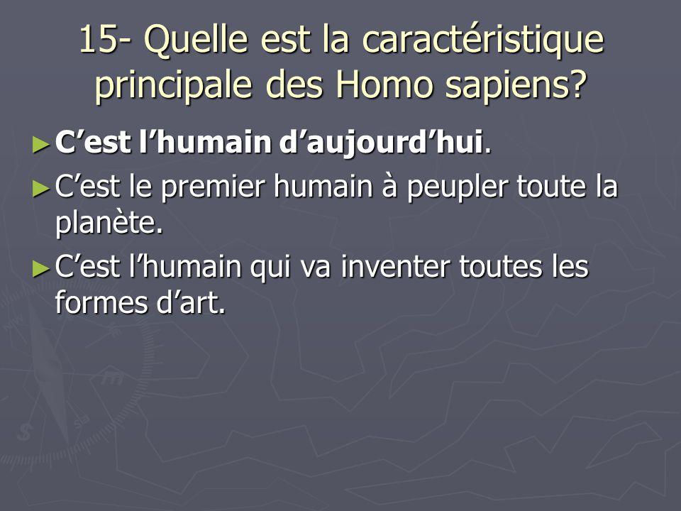 15- Quelle est la caractéristique principale des Homo sapiens