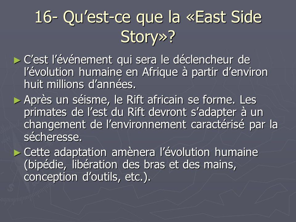 16- Qu'est-ce que la «East Side Story»