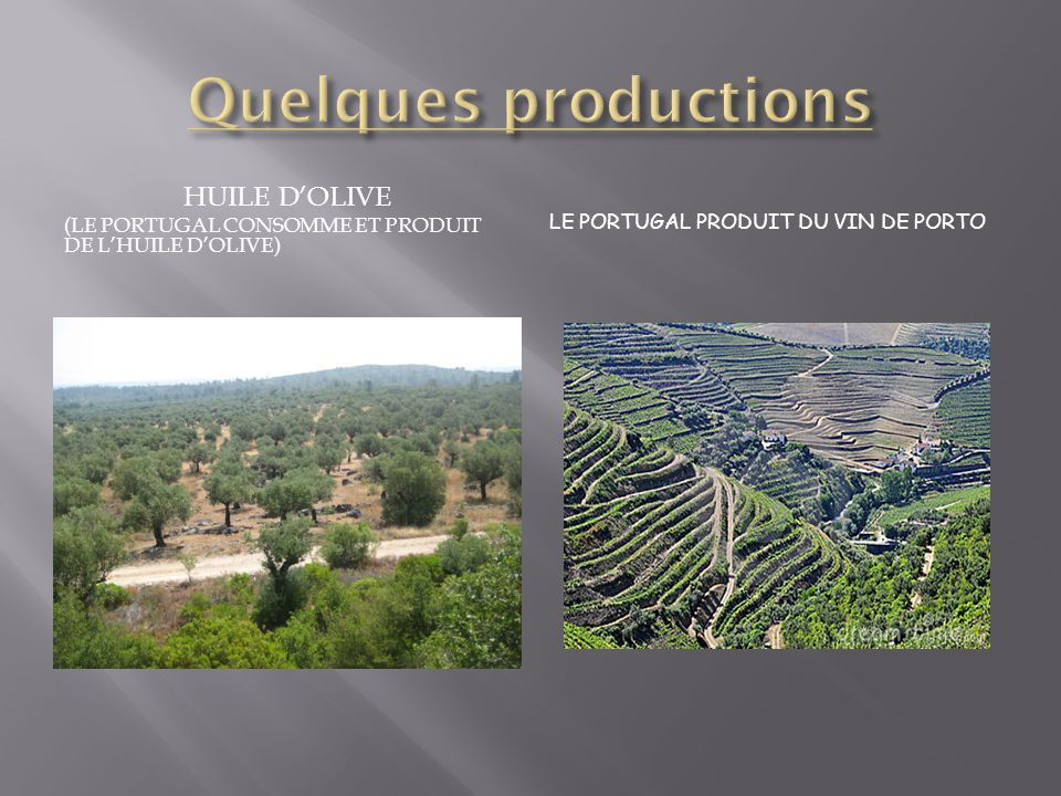 Quelques productions Huile d'olive