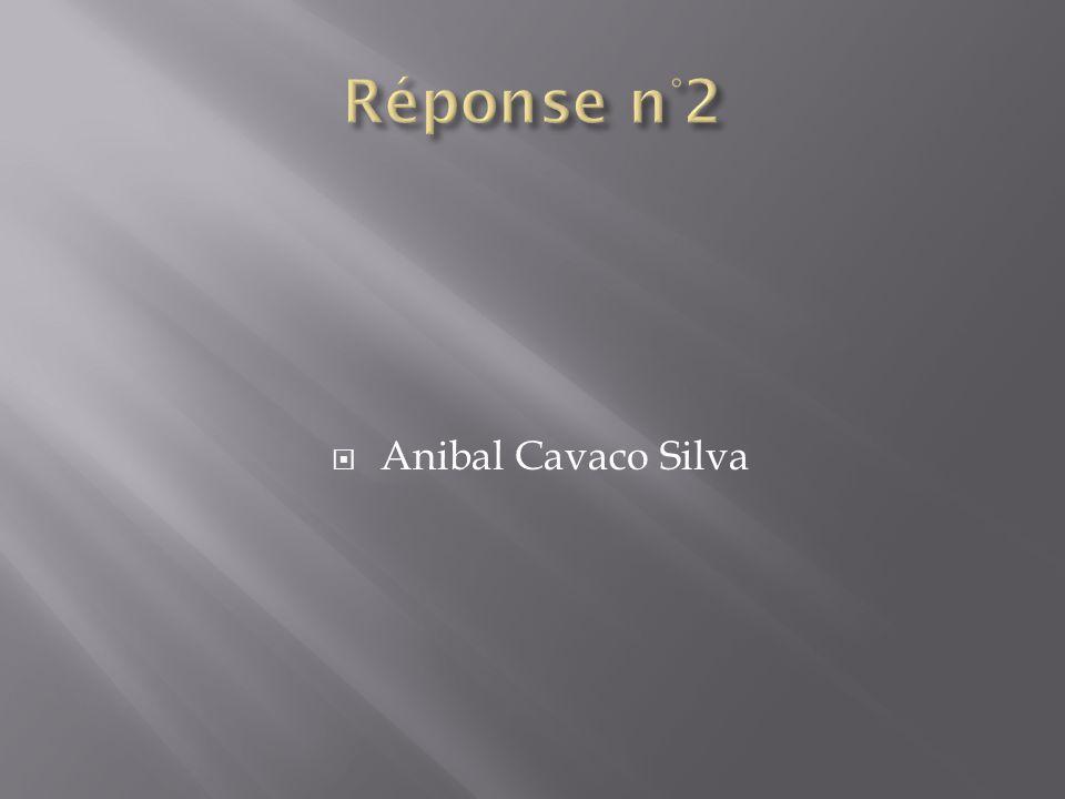 Réponse n°2 Anibal Cavaco Silva