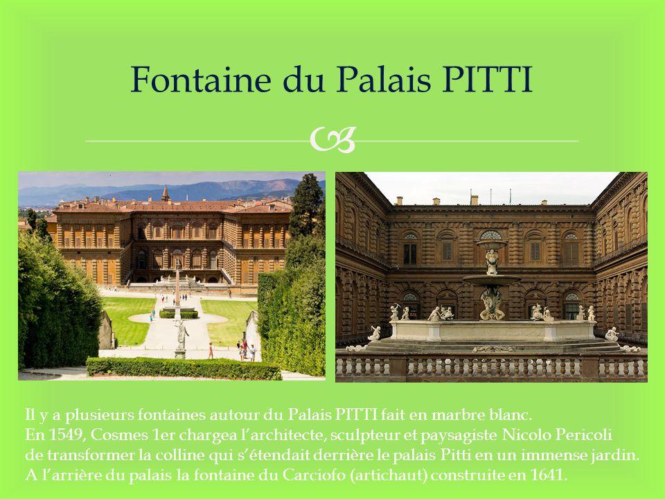 Fontaine du Palais PITTI