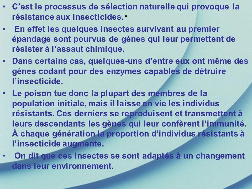 C'est le processus de sélection naturelle qui provoque la résistance aux insecticides.