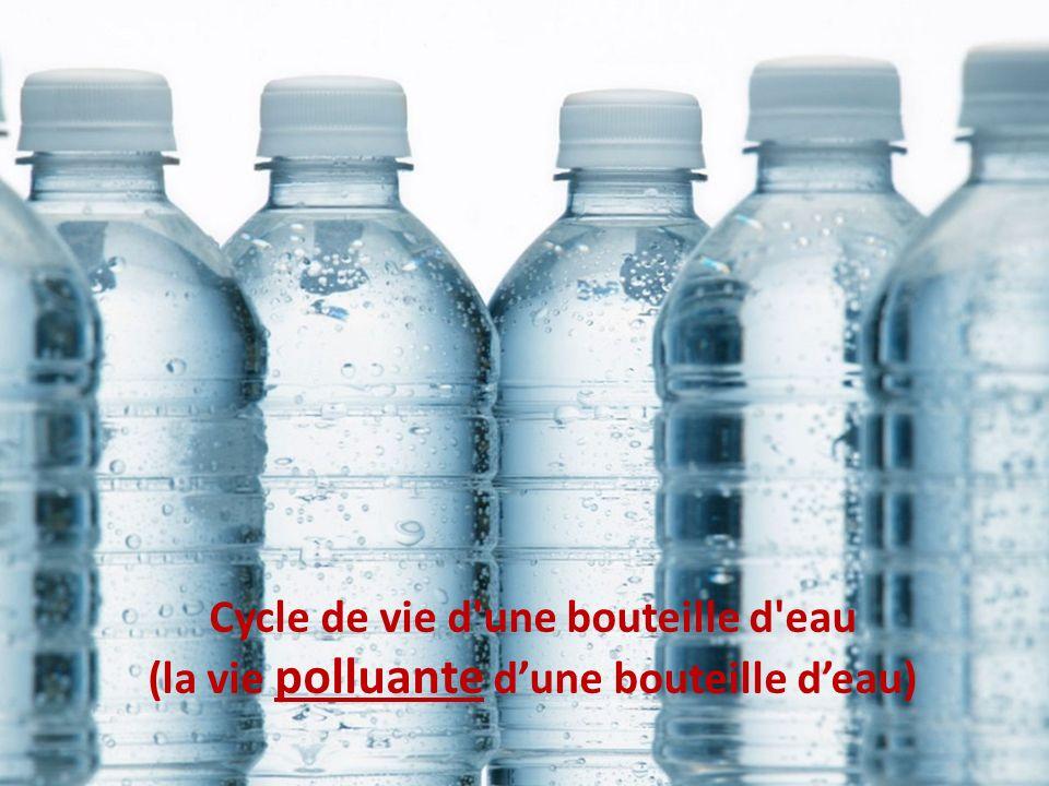 Cycle de vie d une bouteille d eau