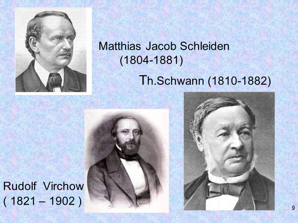 Matthias Jacob Schleiden (1804-1881)