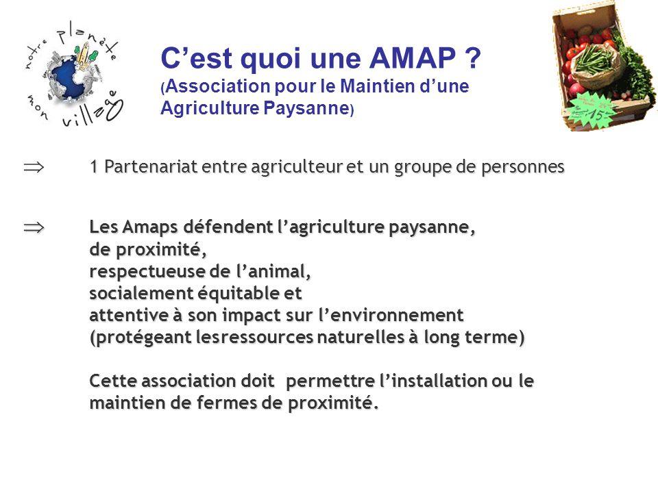 C'est quoi une AMAP (Association pour le Maintien d'une Agriculture Paysanne)
