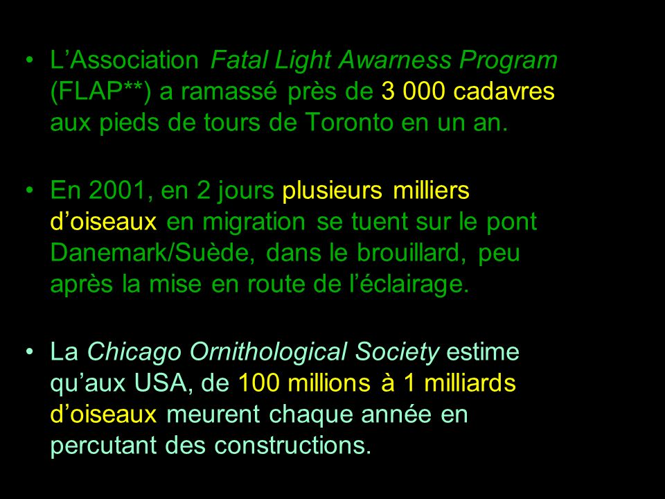 L'Association Fatal Light Awarness Program (FLAP