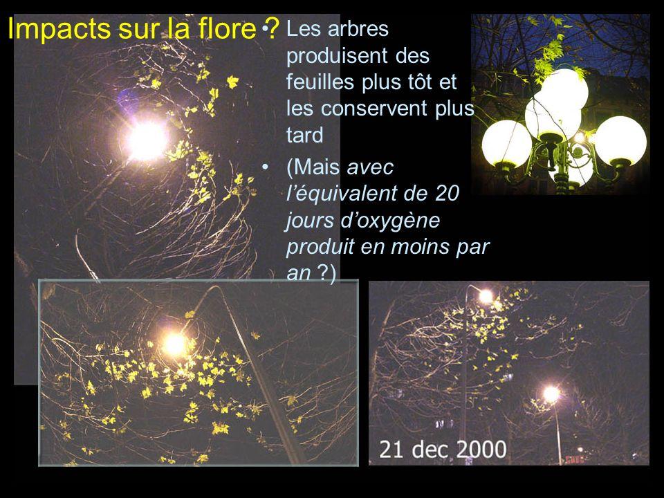 Impacts sur la flore Les arbres produisent des feuilles plus tôt et les conservent plus tard.