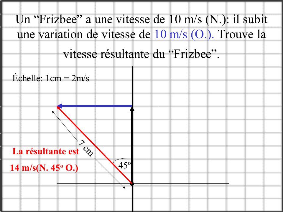 Un Frizbee a une vitesse de 10 m/s (N
