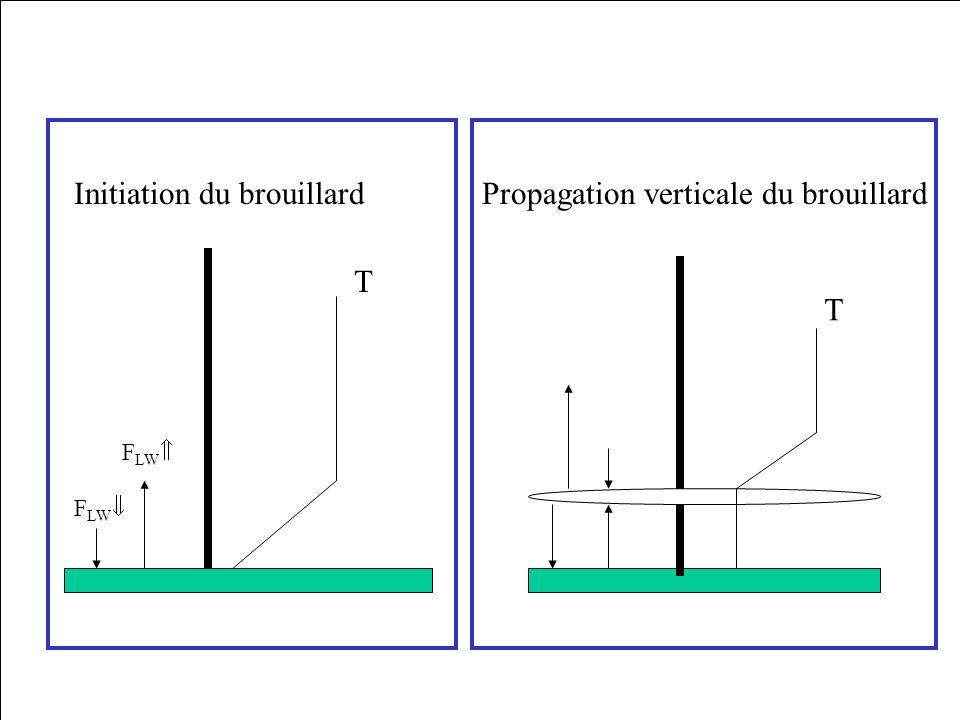 Initiation du brouillard Propagation verticale du brouillard