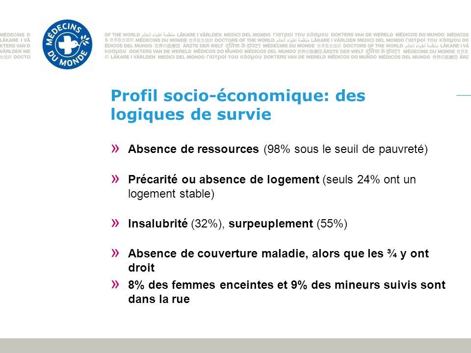Profil socio-économique: des logiques de survie