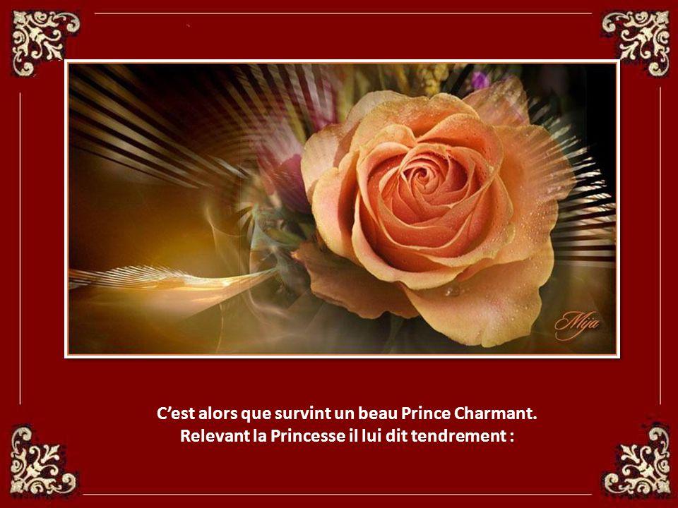 C'est alors que survint un beau Prince Charmant.