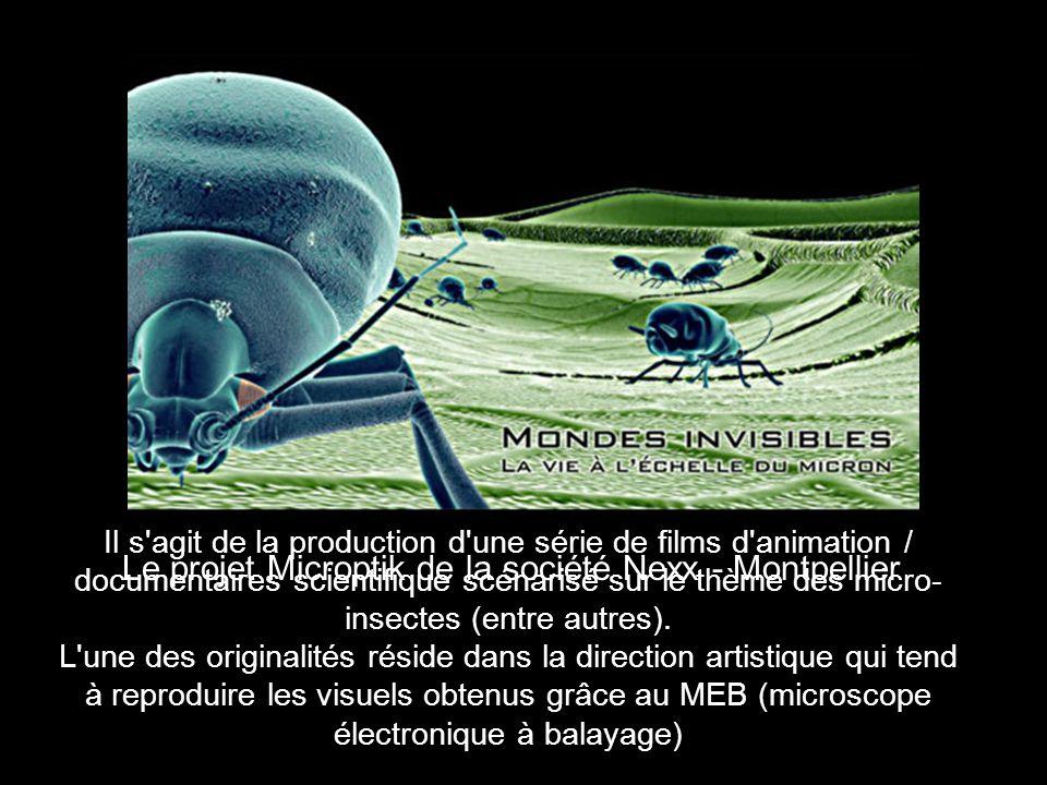 Le projet Microptik de la société Nexx - Montpellier