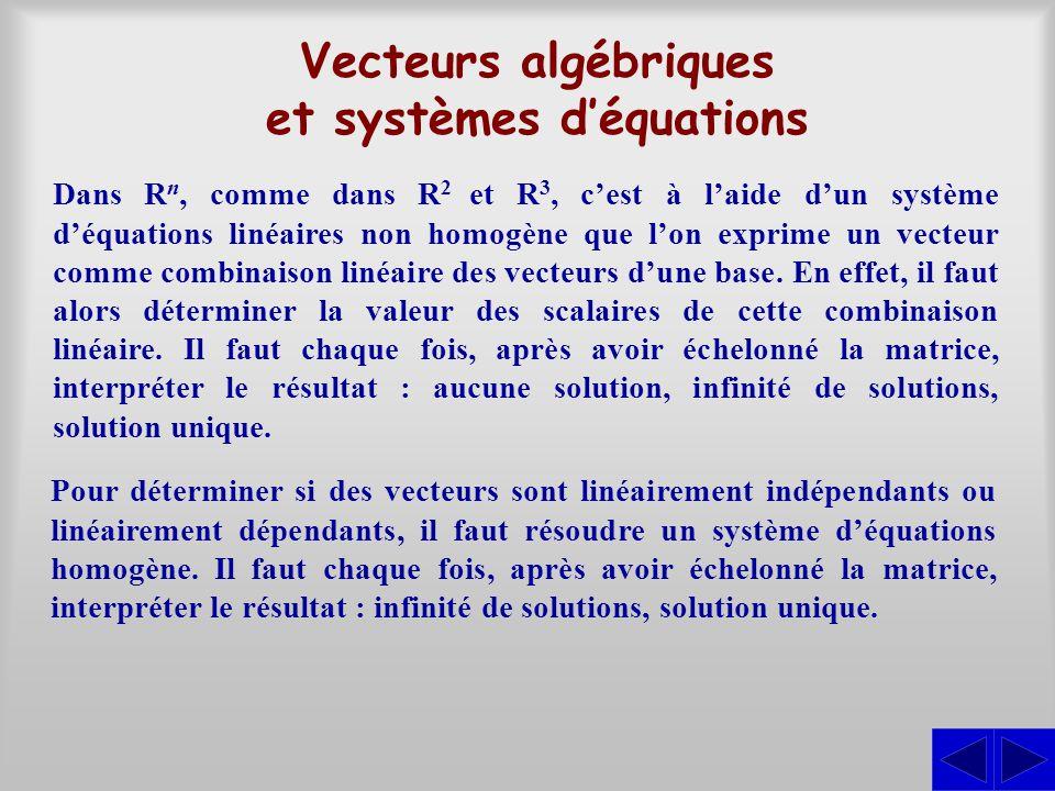 Vecteurs algébriques et systèmes d'équations