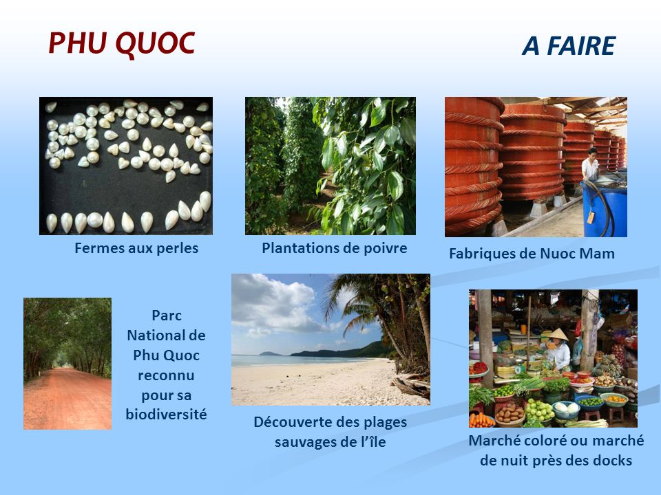 PHU QUOC A FAIRE Fermes aux perles Plantations de poivre