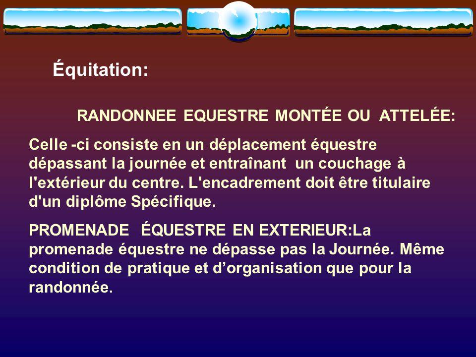Équitation: RANDONNEE EQUESTRE MONTÉE OU ATTELÉE: