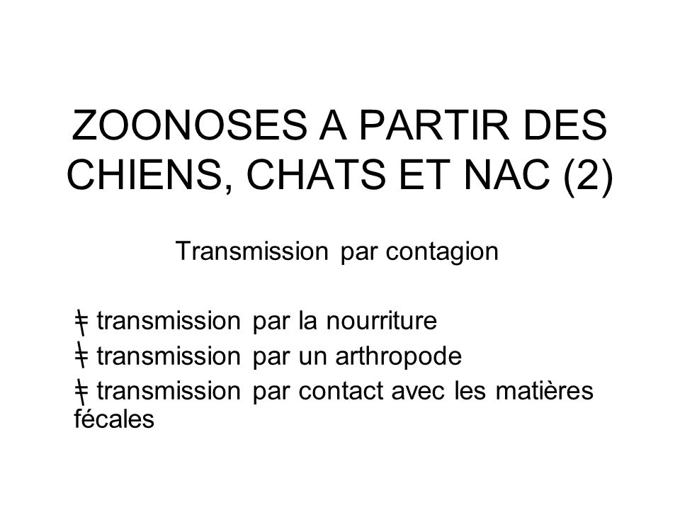 ZOONOSES A PARTIR DES CHIENS, CHATS ET NAC (2)