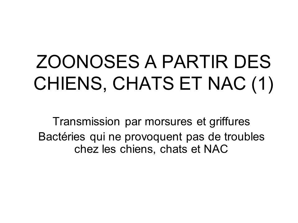 ZOONOSES A PARTIR DES CHIENS, CHATS ET NAC (1)