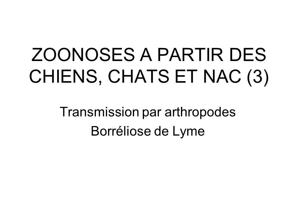 ZOONOSES A PARTIR DES CHIENS, CHATS ET NAC (3)