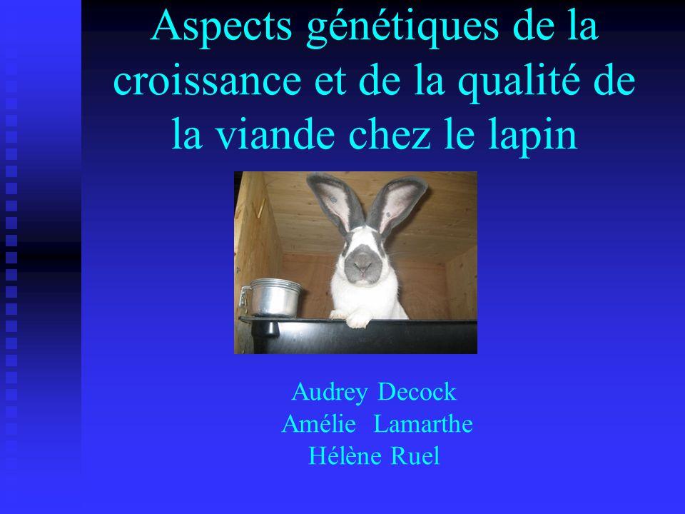 Aspects génétiques de la croissance et de la qualité de la viande chez le lapin Audrey Decock Amélie Lamarthe Hélène Ruel