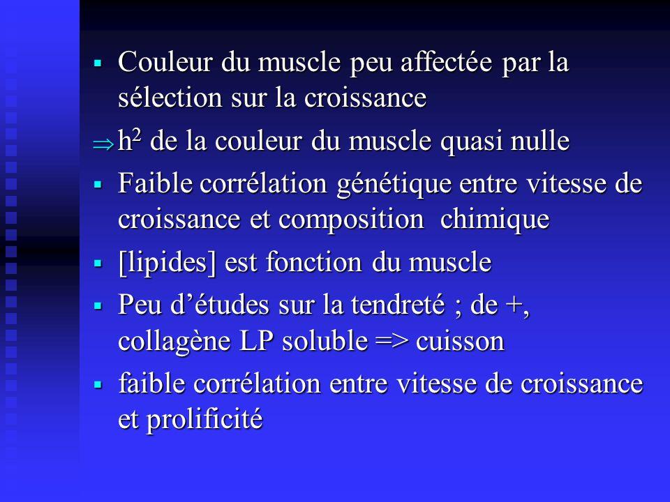 Couleur du muscle peu affectée par la sélection sur la croissance