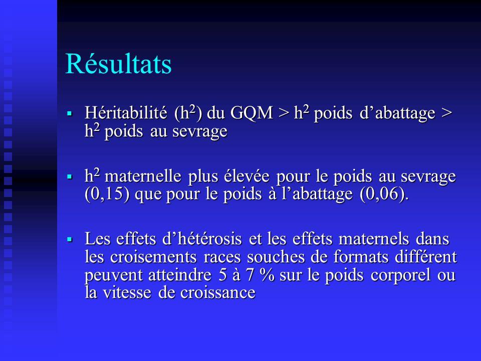 Résultats Héritabilité (h2) du GQM > h2 poids d'abattage > h2 poids au sevrage.