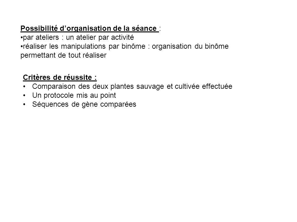 Possibilité d'organisation de la séance :