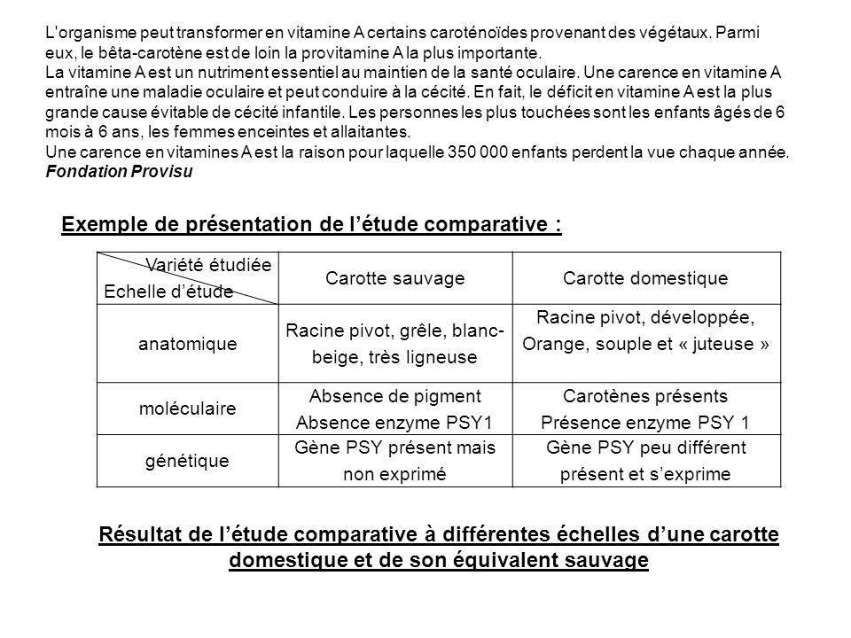 Exemple de présentation de l'étude comparative :