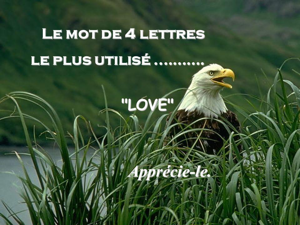 Le mot de 4 lettres le plus utilisé ........... LOVE Apprécie-le.