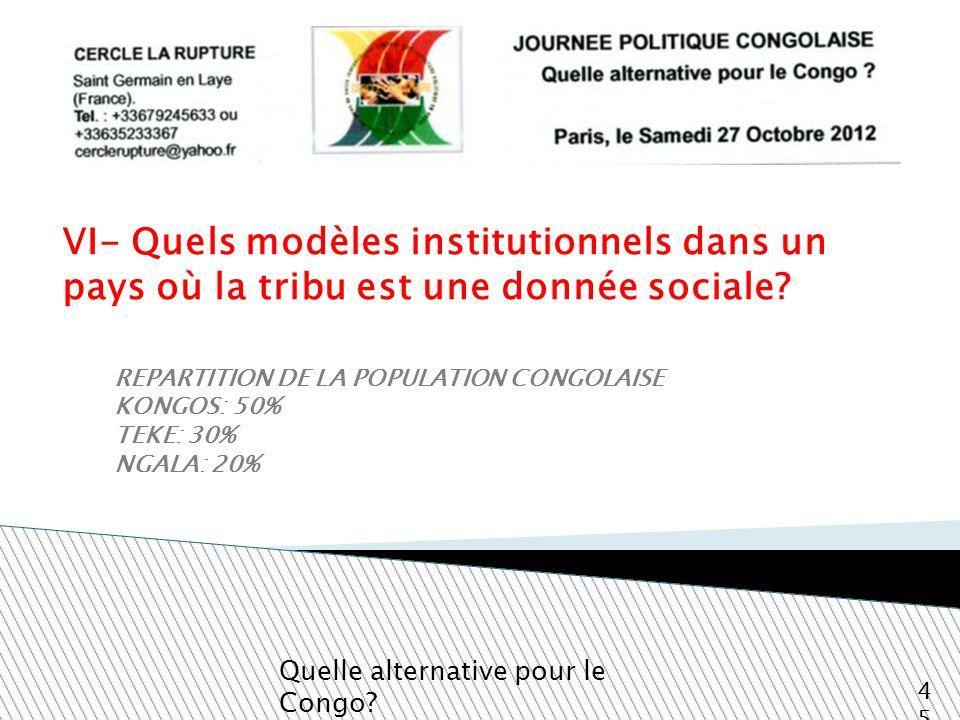 VI- Quels modèles institutionnels dans un pays où la tribu est une donnée sociale