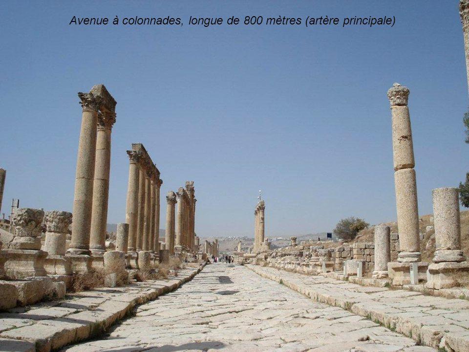 Avenue à colonnades, longue de 800 mètres (artère principale)