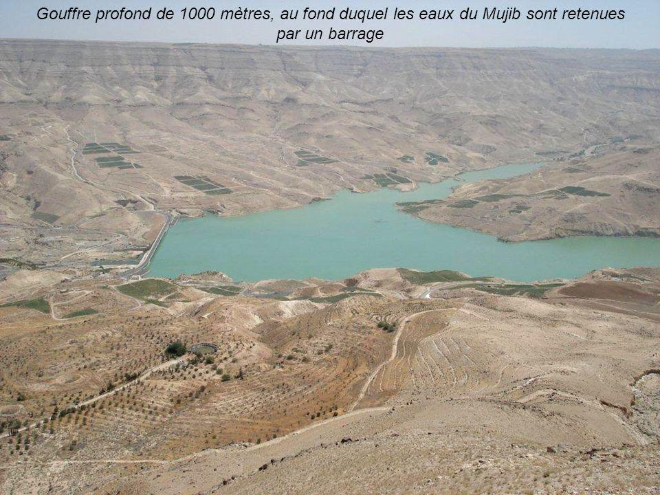 Gouffre profond de 1000 mètres, au fond duquel les eaux du Mujib sont retenues par un barrage