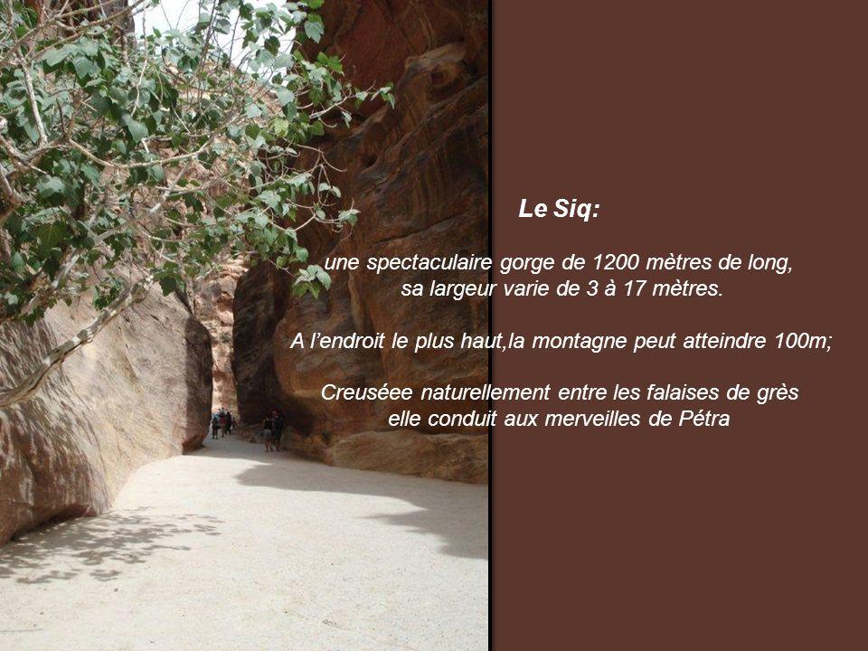 Le Siq: une spectaculaire gorge de 1200 mètres de long,