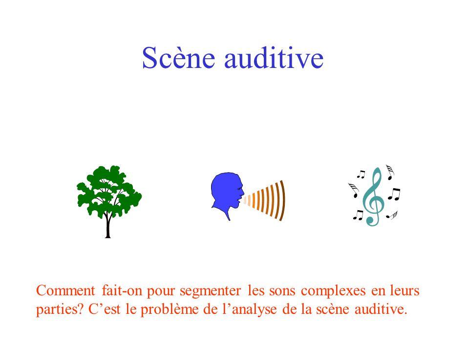 Scène auditive Comment fait-on pour segmenter les sons complexes en leurs parties.