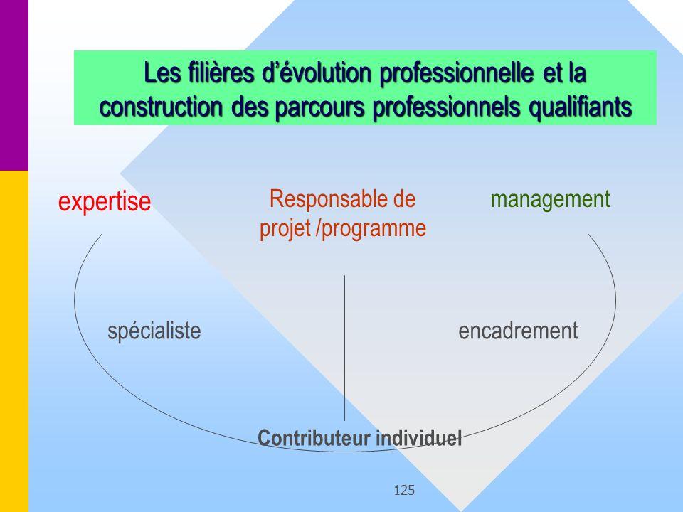 Responsable de projet /programme