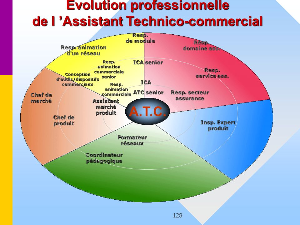 Evolution professionnelle de l 'Assistant Technico-commercial A.T.C.