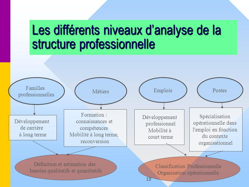 Les différents niveaux d'analyse de la structure professionnelle