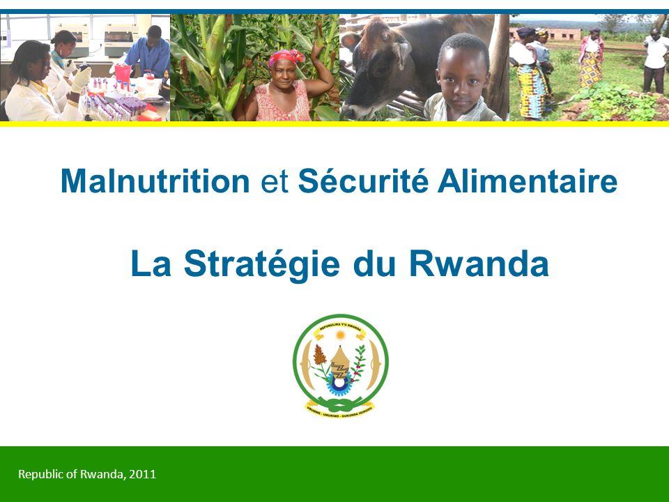 Malnutrition et Sécurité Alimentaire