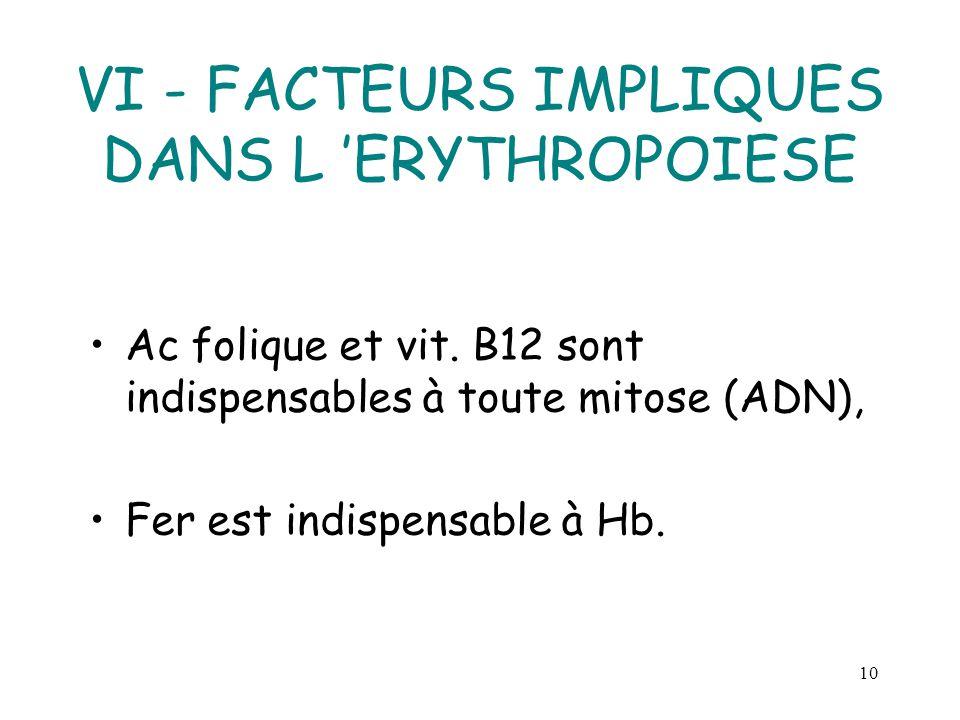 VI - FACTEURS IMPLIQUES DANS L 'ERYTHROPOIESE
