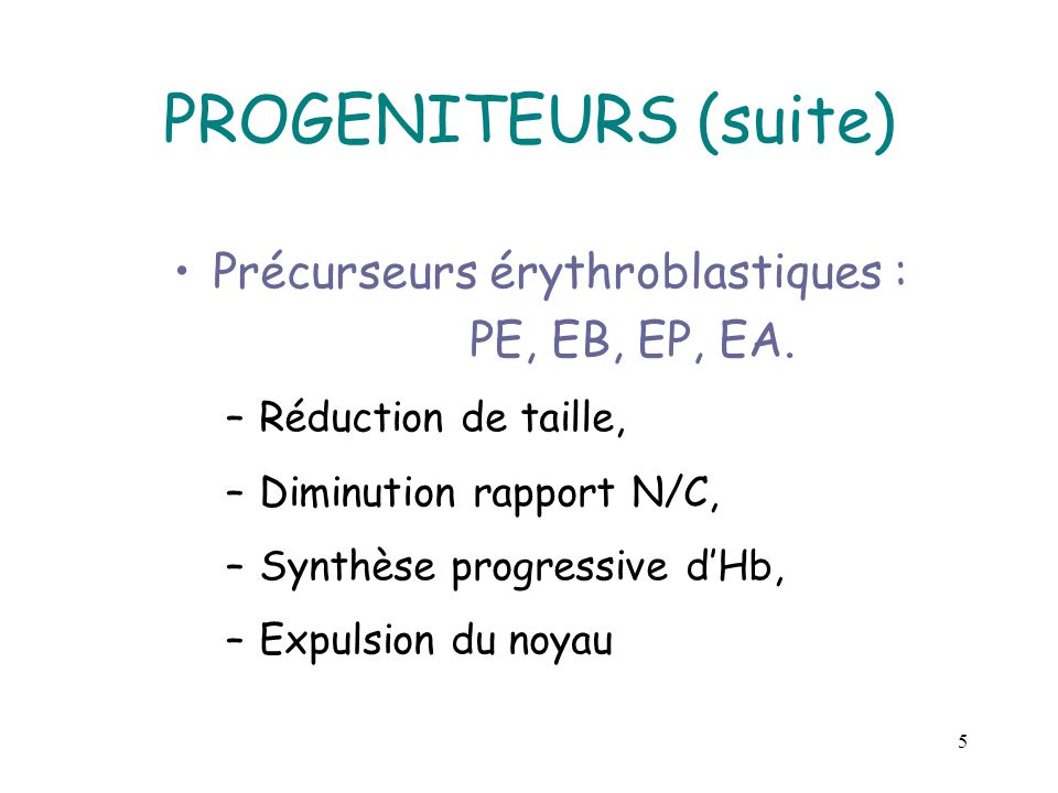 PROGENITEURS (suite) Précurseurs érythroblastiques : PE, EB, EP, EA.