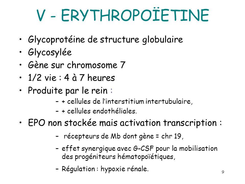 V - ERYTHROPOÏETINE Glycoprotéine de structure globulaire Glycosylée