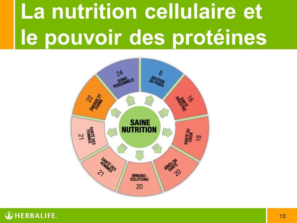 La nutrition cellulaire et le pouvoir des protéines