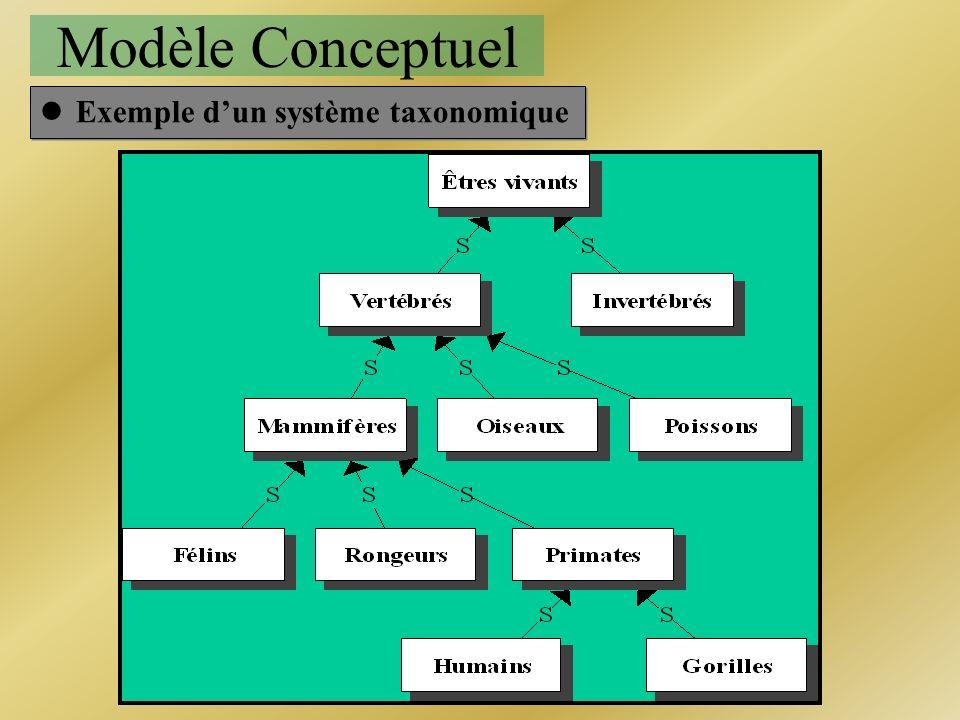 Modèle Conceptuel Exemple d'un système taxonomique