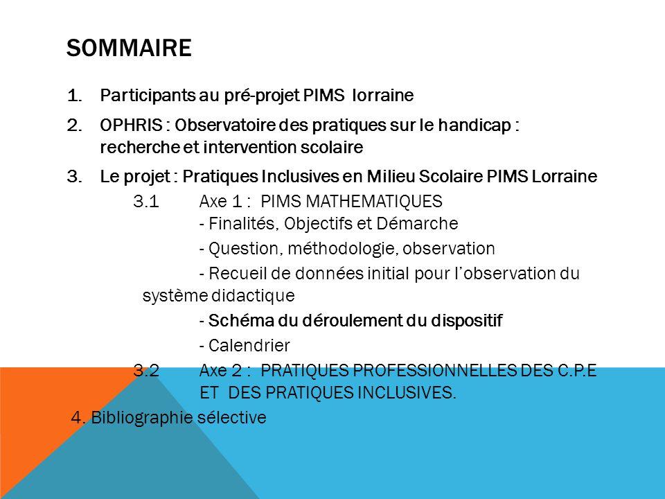 SOMMAIRE Participants au pré-projet PIMS lorraine